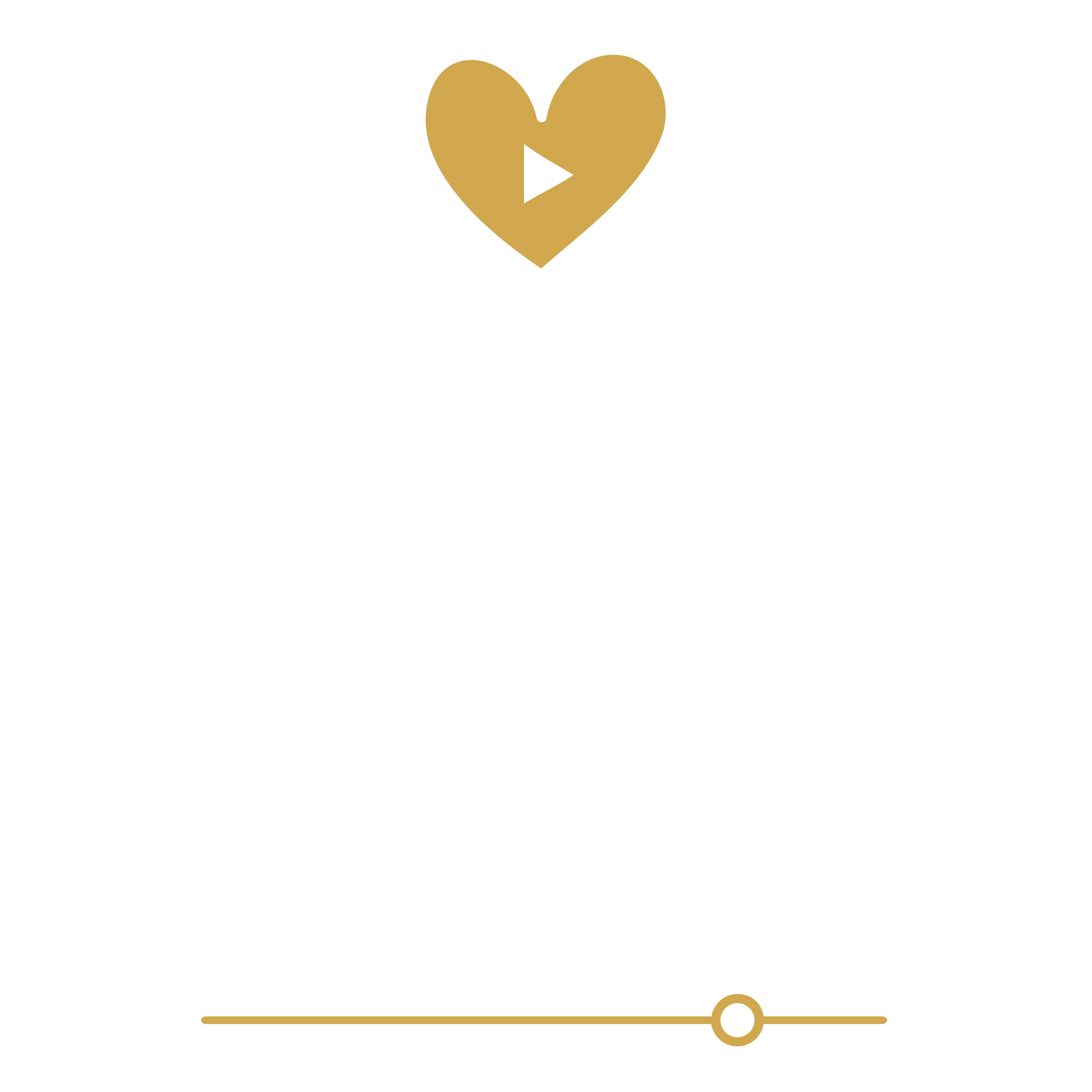 Vlog Visuals